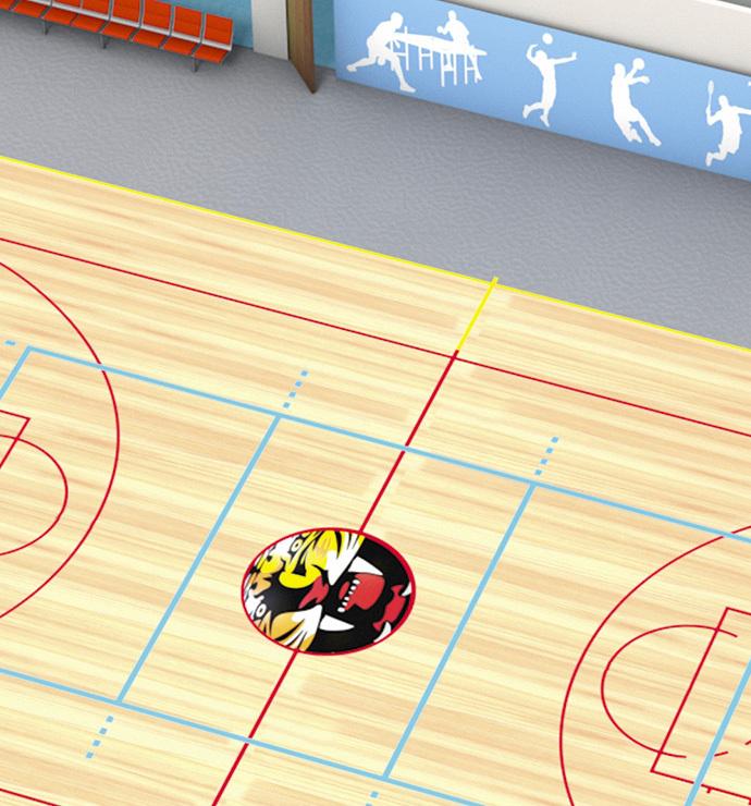 Área desportiva principal